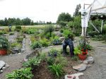 Avoimet puutarhat valtakunnalinen tapahtuma heinäkuun alussa .